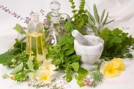 растения снижающие уровень холестерина в крови
